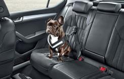 Skoda vrea să gândești ca un câine când alegi mașina
