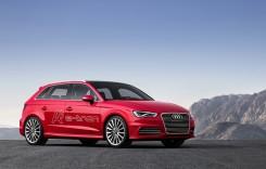 Concluziile experimentului Audi e-tron