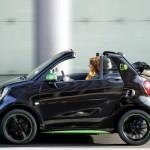 smart-electric-drive (5)