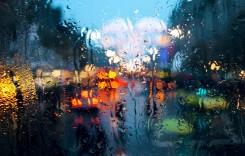 Cod galben de șoferi neatenți – Cum să conduci bine și când plouă