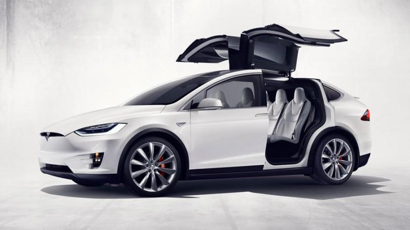 Tesla-Model-X-Falcon-Door-Issues-3-