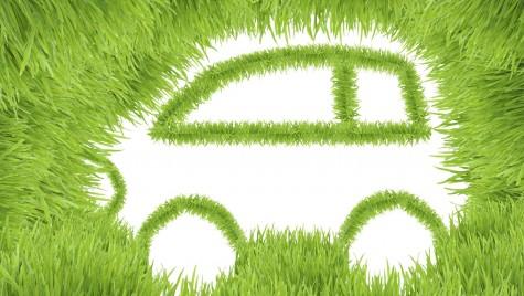 Între ecologie și economie