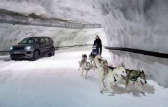 Cai putere vs câini putere – Land Rover Discovery Sport se ia la întrecere cu o sanie trasă de câini husky
