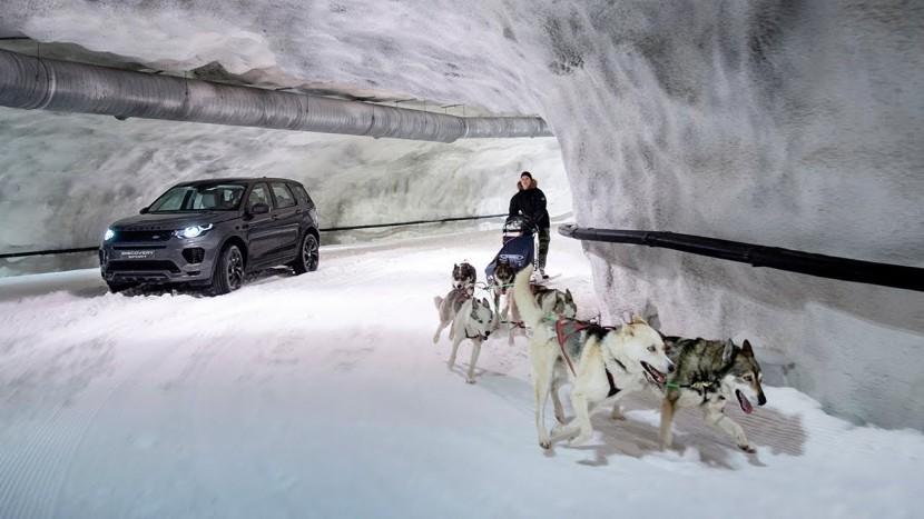 Land Rover Discovery Sport vs husky