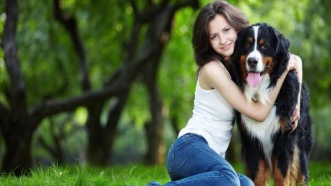 Cum protejăm animalele de companie de accidente