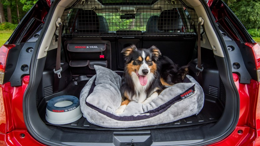 nissan-x-trail-paw-pack-6