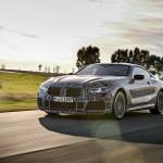 BMW Seria 8 Coupe (8)