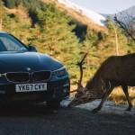 BMW 440i Coupé (20)