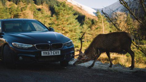 Alergând după soare. În Scoția cu BMW 440i Coupé