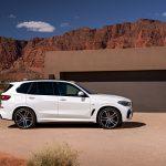 BMW X5 (21)