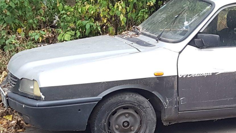 Nostalgie - cine își amintește de Dacia 1310 Dedicație