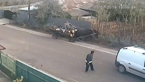 Un bețiv, o căruță, o mașină! Restul e o poveste din România