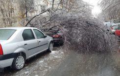 """Fenomenul """"freezing rain"""" a adus mari probleme în București"""