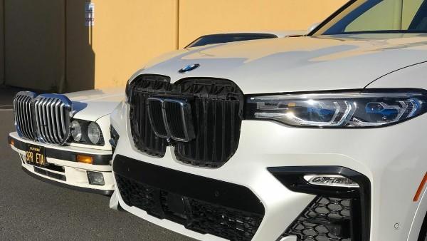 Grila BMW (1)