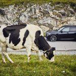 BMW X5 xDrive45e (10)